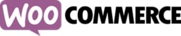 בניית אתרי WooCommerce